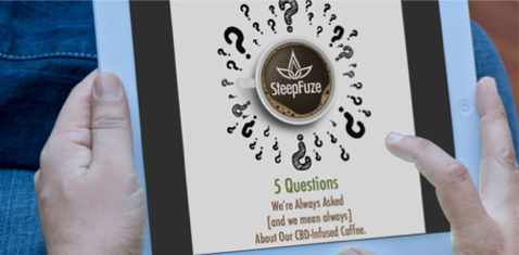TRUSTinbound_SteepFuze_5_Questions.png